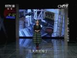 《大家》 20151202 中国工程院院士 王天然