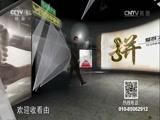 """生活早参考20151219 """"爱拼才会赢""""系列节目 越怪越赚钱"""