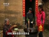 走遍中国2016年全集 - 理睬 - .