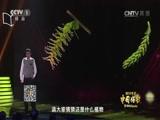 """[2015年度中国好书]""""科普生活类""""获奖图书《草木缘情:中国古典文学中的植物世界》"""