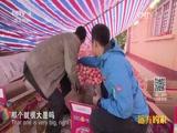 [远方的家]《长城内外》特别节目(4)吉县苹果采摘忙