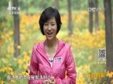 《远方的家》 20160819 特别节目——有滋有味走中国