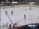 [NHL]常规赛:波士顿棕熊VS匹兹堡企鹅 第二节