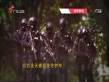 《南粤警视》 20170205 粤警行动(下)