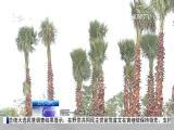 厦视新闻 2017.5.3 - 厦门电视台 00:22:59