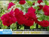 特区房地产 2017.06.02 - 厦门电视台 00:10:31