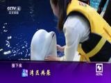 《走遍中国》 20170614 系列片《特区中的特区》 第三集 湾区共荣