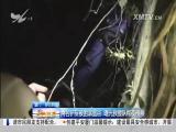 午间新闻广场 2017.7.21 - 厦门电视台 00:20:18