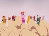 《动物好伙伴》主题曲MV(主持人版)