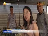 《丝路晚新闻》 20170904