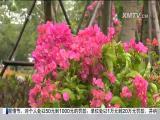 特区新闻广场 2017.9.9 - 厦门电视台 00:23:23