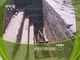 柳孜运河遗址发掘记(二) 00:37:50