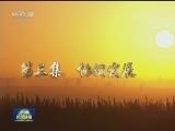 """[视频]电视纪录片《辉煌中国》今晚播出第三集""""协调发展"""""""