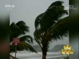 [新闻袋袋裤]飓风登陆多米尼克 总理直播屋顶被掀