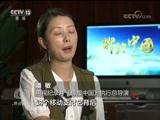 《焦点访谈》 20171002 辉煌中国 成就辉煌