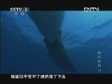 《魅力纪录》 20121119 地球脉动 第十一集 无垠深海