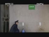 《魅力纪录》 20130305 超级工程 第二集 上海中心大厦