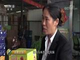 《消费主张》 20171012 丰收的果园(四):河南郑州