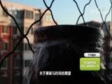 《探索发现》 20171012 中华巧工(八)味道