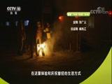 多彩中国(一) 00:49:55