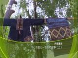 织造记——纺织的故事(上) 00:36:47