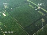 《航拍中国》 20171114 陕西 精编版