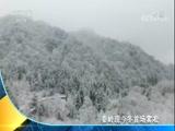 [经济信息联播]秦岭现今冬首场雾凇