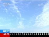 [朝闻天下]河南 四千余白天鹅飞临天鹅湖栖息越冬