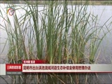 [云南新闻联播]昆明市出台滇池流域河道生态补偿金使用管理方法