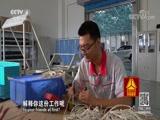 《撞出安全》(上)你的汽车安全吗 走遍中国 2017.12.14 - 中央电视台 00:25:54