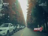 有个地方的风景一半是春天一半是秋天? 是真的吗 2017.12.21 - 中央电视台 00:08:49