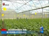 《贵州新闻联播》 20180109