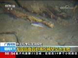[朝闻天下]中法科考队溶洞探险 广西河池 发现盲鱼盲虾等珍稀罕见水生物