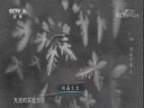《创新中国》 第六集 潮起 00:49:27