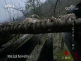 《舌尖上的中国 第二季》 第二集 脚步