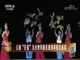 """[海峡两岸]云南""""孔雀""""为台湾同胞呈现别样视觉盛宴"""