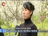 《重庆新闻联播》 20180224