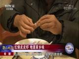 希腊:红烧皮皮虾地道家乡味 华人世界 2018.03.15 - 中央电视台 00:02:47