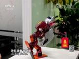 [走遍中国]认识人工智能