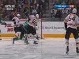 [NHL]常规赛:波士顿棕熊3-2达拉斯星 比赛集锦