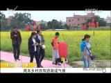 炫彩生活 2018.03.28 - 厦门电视台 00:07:16