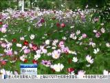 特区新闻广场 2018.05.03 - 厦门电视台 00:24:10
