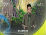 """秘境寻宝·""""狗头金""""传奇(中) 00:24:35"""