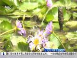厦视新闻 2018.5.19 - 厦门电视台 00:23:49