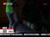 [特别关注-北京]美国得州居民私家车道惊现短吻鳄
