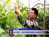 [军事报道]浙江安吉:民兵积极投身绿色生态建设