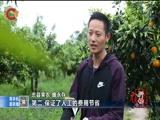 《重庆新闻联播》 20180522