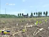 [吉林新闻联播]扎实做好抗旱工作 确保农业生产安全