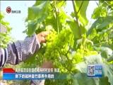 《贵州新闻联播》 20180612