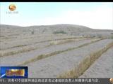 """[甘肃新闻] """"世界防治荒漠化与干旱日""""座谈会召开"""